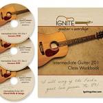Intermediate Guitar 201 Course